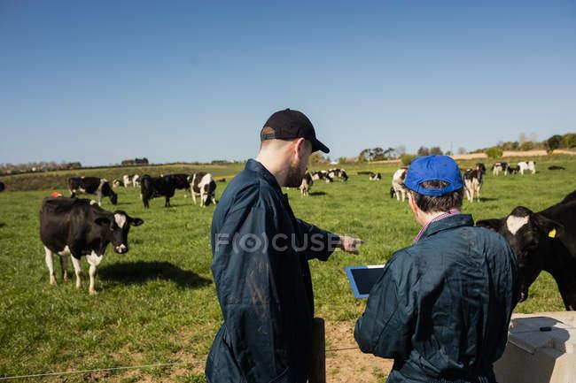 Landarbeiter diskutieren bei klarem Himmel über Tablet-Computer auf Feld — Stockfoto