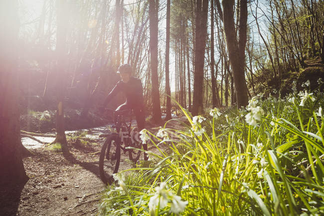 Mountain bike in sella a un sentiero lungo il torrente nel bosco — Foto stock
