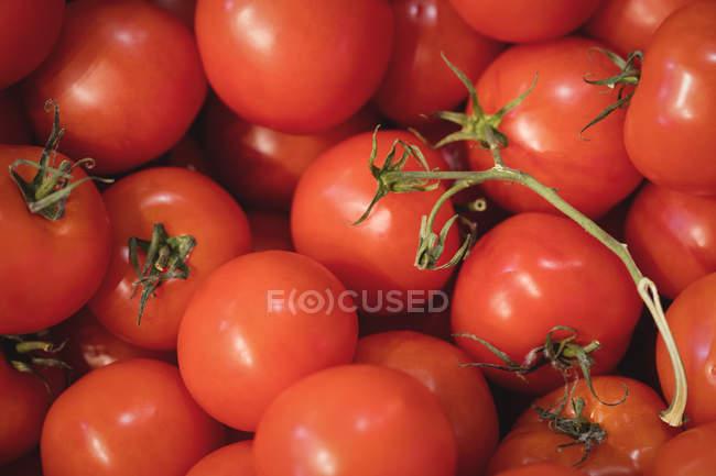 Закри свіжими помідорами в супермаркеті — стокове фото
