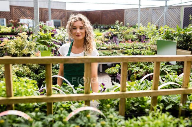 Портрет жіноче флорист, стоячи в садовому центрі — стокове фото