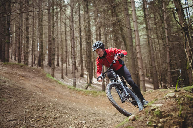 Mountain biker riding on dirt road amidst tree in forest — Stock Photo