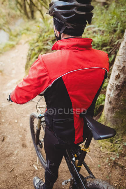 Vista posteriore di mountain bike sul sentiero nel bosco — Foto stock