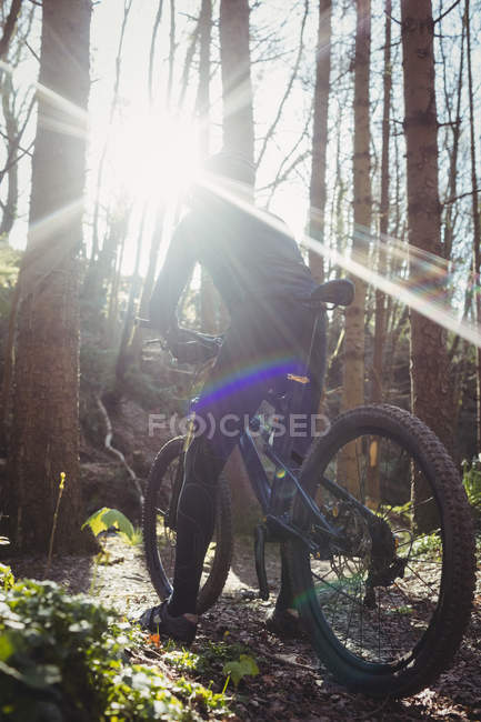 Rear view of mountain biker riding bicycle in forest on sunny day — Stock Photo