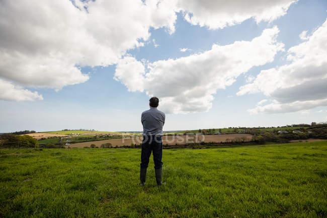 Vista posteriore dell'uomo in piedi sul campo erboso contro il cielo nuvoloso — Foto stock