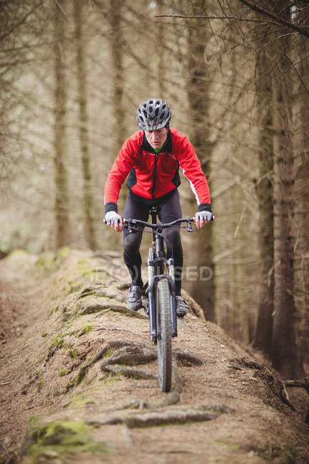 Front view of male biker riding on dirt road by trees in forest — Stock Photo