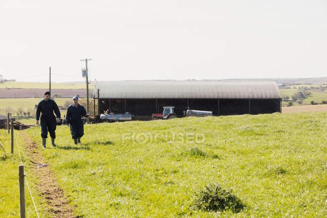 Lavoratori agricoli che camminano sul campo erboso contro il cielo — Foto stock