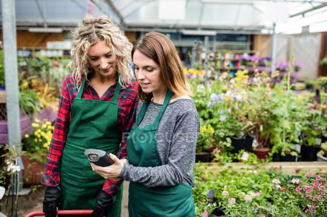 Две девушки флористов, с помощью ручной сканер в садовом центре — стоковое фото