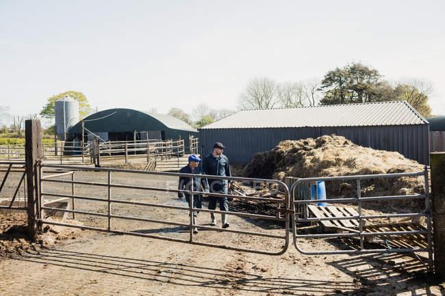 По всей длине фермы рабочие идут к забору в сарае — стоковое фото