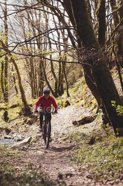 Вид спереди на горных байкеров, катающихся по деревьям в лесу — стоковое фото