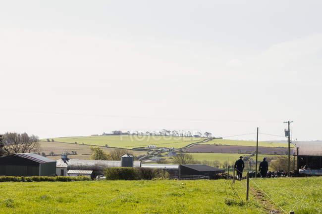 Vista panorâmica do campo gramado contra o céu no dia ensolarado — Fotografia de Stock
