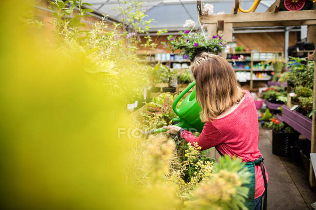 Female florist watering plant with watering can in garden centre — Stock Photo