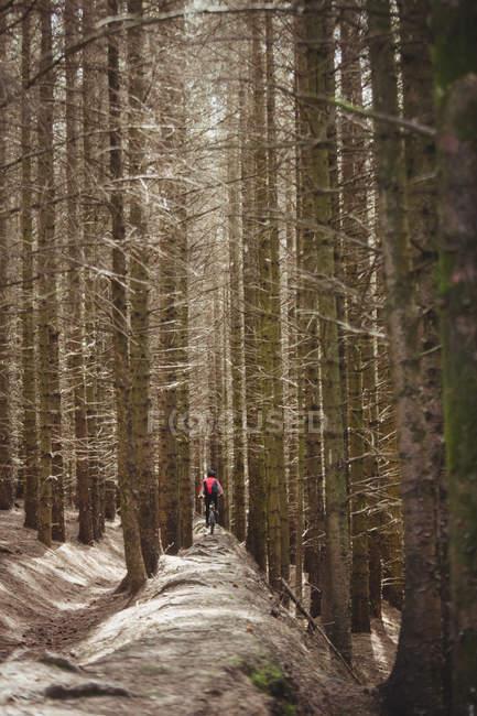 Distanza vista di mountain bike equitazione su strada sterrata tra gli alberi nella foresta — Foto stock