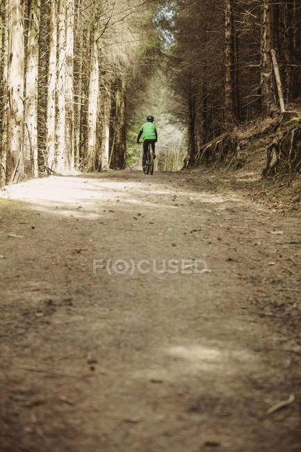 Vista posteriore di mountain bike equitazione su strada sterrata nel bosco — Foto stock