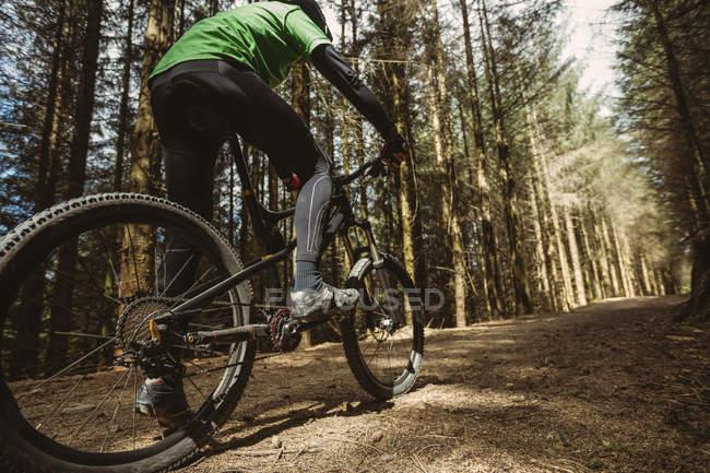 Низкий угол обзора езда горных велосипедистов по грунтовой дороге в лесу — стоковое фото