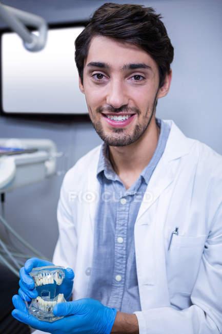 Retrato de dentista segurando modelo de boca em clínica — Fotografia de Stock