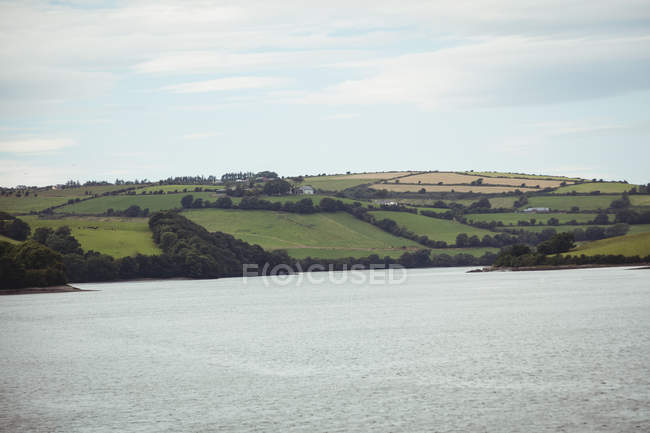 View of sea and field on sunny day — Stock Photo