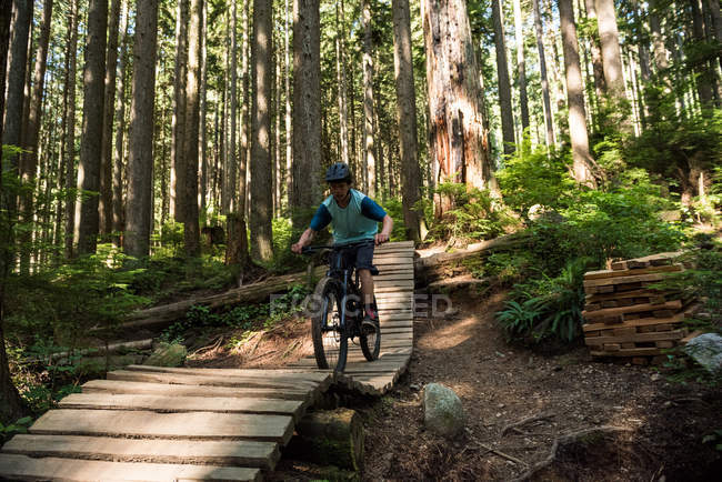 Male cyclist cycling in forest in sunlight — Stock Photo