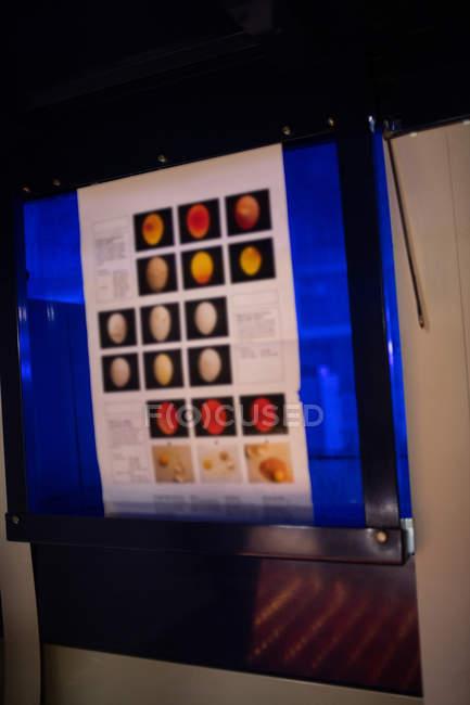 Primer plano del monitor de huevo digital en la fábrica de huevos - foto de stock