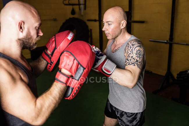 Боксёры кавказского Таиланда занимаются боксом в тренажерном зале — стоковое фото