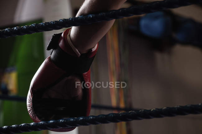 Cropped image of boxer leaning on ropes of boxer ring — Stock Photo