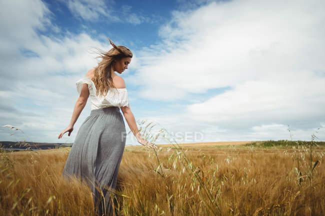 Красивая женщина трогает пшеницу в поле — стоковое фото