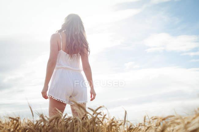 Visão de baixo ângulo da mulher em pé no campo de trigo no dia ensolarado — Fotografia de Stock