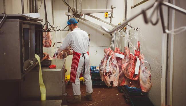 Різник працюють у кімнаті зберігання м'ясо м'ясників магазині — стокове фото