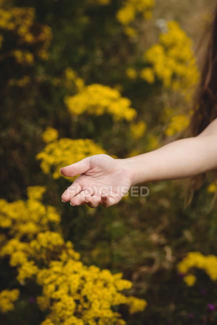 Куповані образ жінки стоять в лузі сонячний день — стокове фото