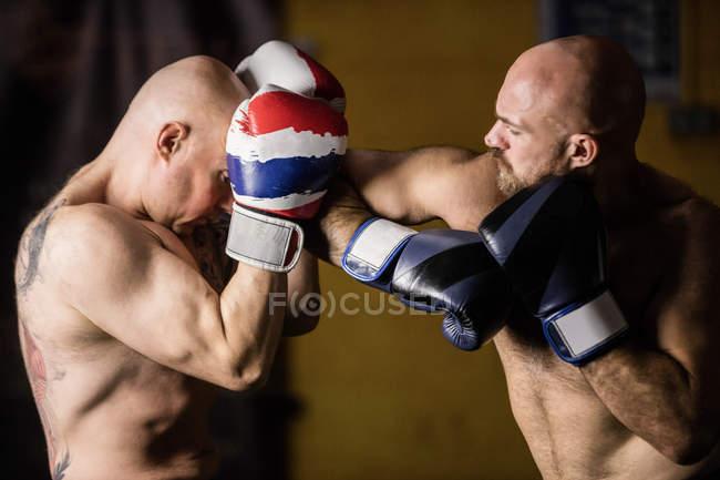 Porträt zweier thailändischer Boxer beim Training im Fitnessstudio — Stockfoto