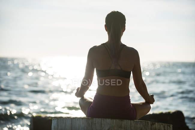 Задний вид женщины, практикующей йогу на дровах в солнечный день — стоковое фото