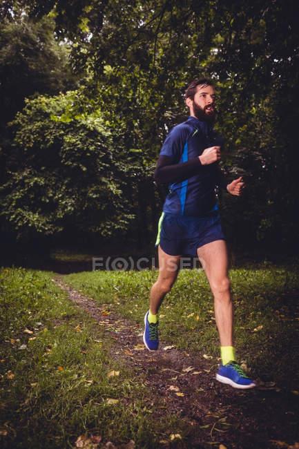 Спортсмен бегает по грунтовой дорожке в лесу — стоковое фото