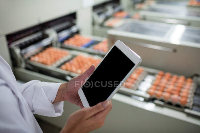 Cropped image of female staff using digital tablet next to production line in egg factory — Stock Photo