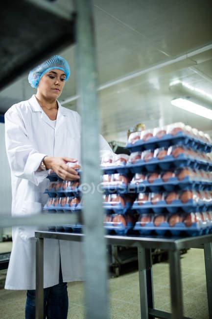Персонал женского пола собирает коробки с яйцами рядом с производственной линией на яичном заводе — стоковое фото