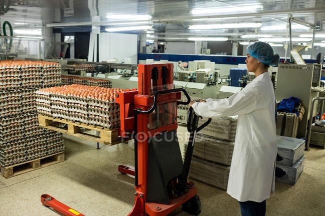 Сотрудницы загрузки коробку яиц на поддон Джек яйцо фабрике — стоковое фото