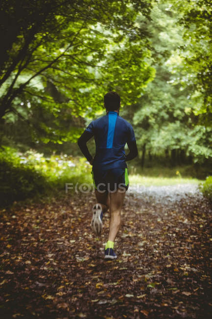 Rear view of athlete running on dirt track in forest — Stock Photo