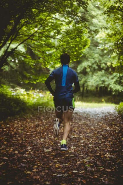 Vue arrière de l'athlète qui court sur une piste de terre en forêt — Photo de stock