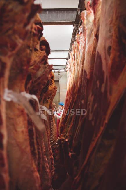 Viande rouge pelée suspendue dans la salle de stockage à la boucherie — Photo de stock