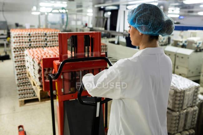 Жіночий персонал завантаження картонні коробки яєць на піддон гніздо яйце заводі — стокове фото