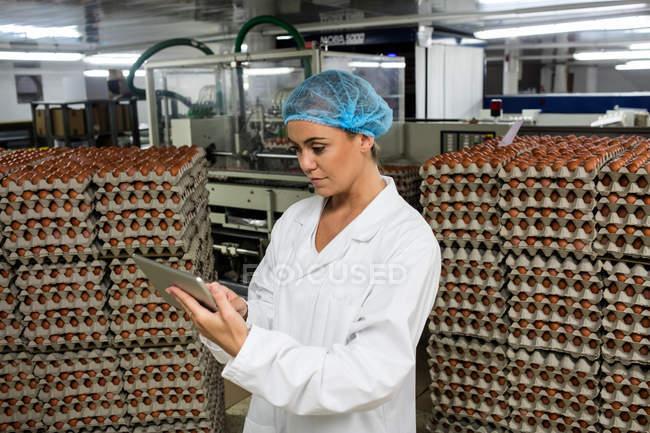 Personnel féminin à l'aide de tablette numérique dans l'usine d'oeuf — Photo de stock
