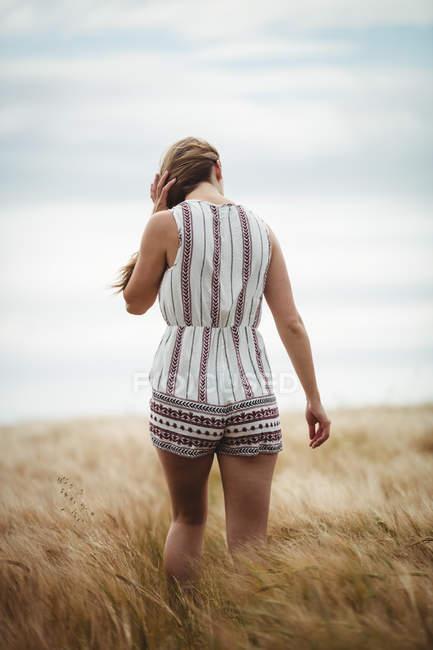 Visão traseira da mulher caminhando pelo campo de trigo no dia ensolarado — Fotografia de Stock