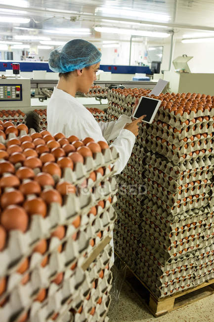 Travailleuse à l'aide de tablette numérique dans l'usine d'oeuf — Photo de stock