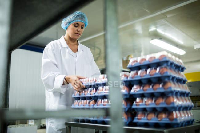 Жіночий персонал організації яйце коробки поруч з конвеєра на заводі яйце — стокове фото