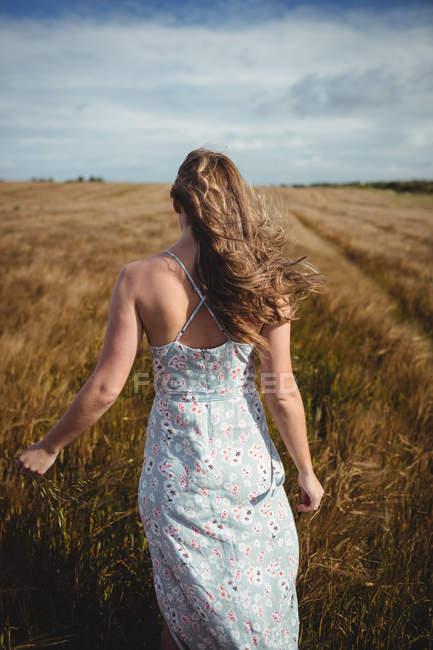 Задній вид Жінка вигулює через пшенична сфера на сонячний день — стокове фото
