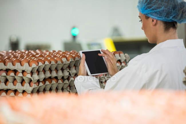 Personnel attentif femelle à l'aide de tablette numérique dans l'usine d'oeuf — Photo de stock