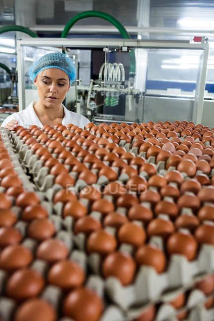 Aufmerksame Mitarbeiterinnen untersuchen Eier in Fabrik — Stockfoto