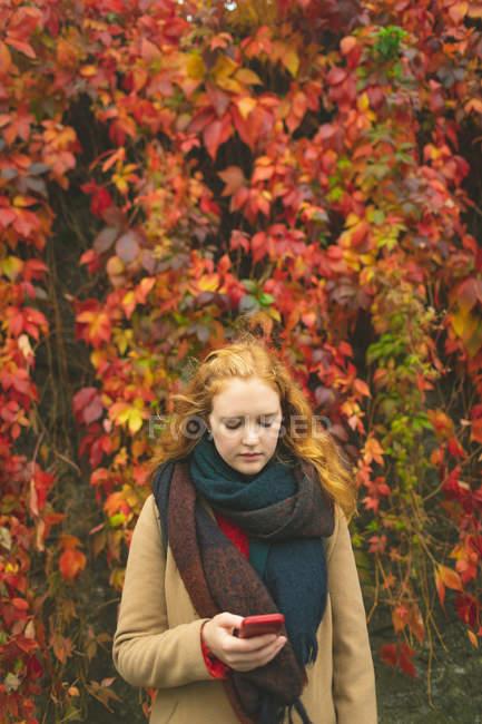 Pelirroja usando teléfono móvil contra enredadera de plantas durante el otoño - foto de stock