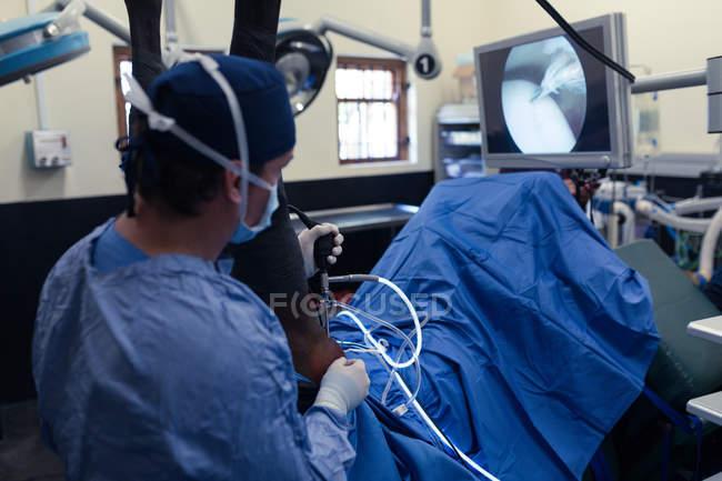Мужчины хирург работает лошадь в театре операции в больнице — стоковое фото