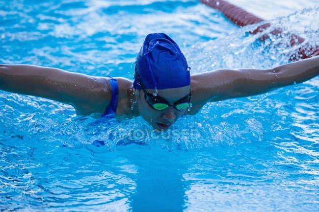 Вид бабочки-пловчихи в бассейне — стоковое фото