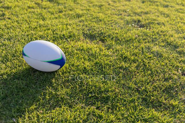 Висока кут зору Регбійним м'ячем в землі стадіону у сонячний день — стокове фото
