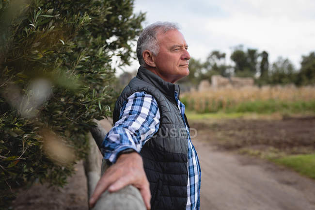 Side view of senior Caucasian male farmer standing on farm road leaning against wooden fence at farm — Stock Photo